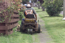 Council attention to untidy berms is under threat in a bid to save money. Photo / Supplied 