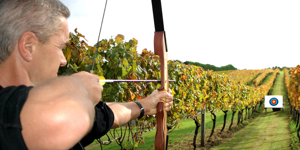 Archery at Wild on Waiheke. Photo / Supplied