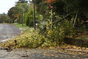 The MetService says severe norwest gales are likely to create flying debris around the Otago and Southland regions today. Photo / Daily Post
