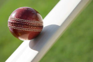 The domestic T20 season begins with a whisper in Hamilton tonight. Photo / Thinkstock