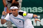 David Ferrer, the world No 5, will return in January to chase a third-straight Heineken Open title. Photo /  Dean Purcell.