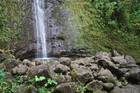 Manoa Falls is one of the most popular hikes on Oahu, Hawaii. Photo / Thinkstock