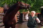 Sir Patrick Hogan with Zabeel, who will have four of his progeny in the Melbourne Cup tomorrow. Photo / Brendon O'Hagan