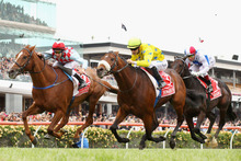 Heartbreak for Ed Dunlop as Dunaden (yellow colours) noses out Red Cadeaux in last year's Melbourne Cu
