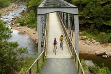 Rail bridge on the Hauraki Rail Trail. Photo / Supplied