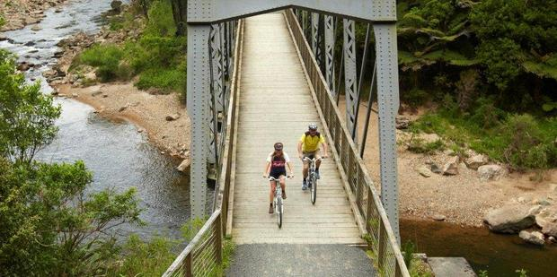 Rail bridge on the Hauraki Rail Trail. Photo / Supplied
