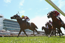 Melbourne Cup frivolities attract many Kiwis usually averse to the sport and unaccustomed to placing a bet. Photo / Getty Images