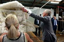 Britain's Prince Charles throws fleece onto a table during a visit to the Leenavale Sheep Stud at Sorell, near Hobart, Australia. Photo / AP 