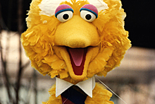 Big Bird popped up all over the internet in satirical takes on the 2012 presidential campaign.
