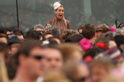 A punter cheers on the field during last year's Melbourne Cup. Photo / Getty Images