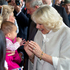 Camilla, Duchess of Cornwall, greets the public on Queen Street today. Photo / Steve McNicholl