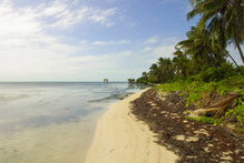 The body was discovered at the Ambergris Caye home yesterday. Photo / Thinkstock