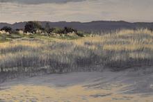 Transfusion Art 2010's winning entry Ohiwa Dunes was stolen from Waikato Hospital last week. Photo / Supplied