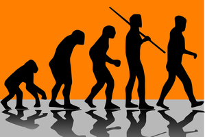 A scientist has raised the prospect that our evolution may have peaked. Photo / Getty Images