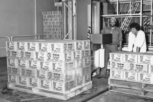 The first Fresh Up manufacturing line produced 1000 cans a day. Photo / Supplied