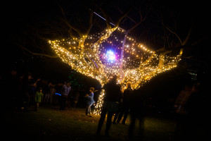 Art in the Dark in Ponsonby's Western Park. Photo / Hannah Good
