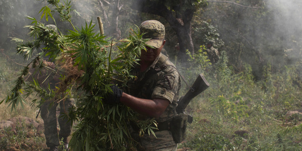 Mexico may struggle to enforce a ban on smuggling marijuana, which is now legal in some US states. Photo / AP