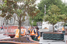 City Care workers plant trees in Cathedral Square. Photo / Geoff Sloan