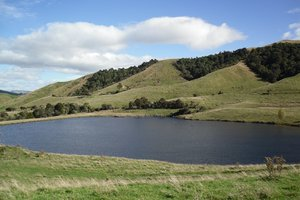 Farmers, industries and other large users may be charged for water under a new policy being developed. Photo / APN