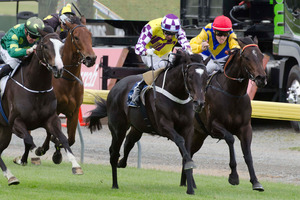 Sacred Falls (centre) held off Oasis Rose (outer) and Warhorse (rails) to win the 2000 Guineas. Picture / SNPA