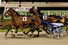 Sushi Sushi wins the 2011 Woodlands Stud Northern Derby. Photo / Greg Purcell