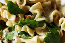 Watercress and walnut pasta. Photo / Chris Skelton
