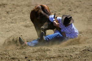 The rodeo is coming to Hamilton's Claudelands Arena. Photo / Thinkstock