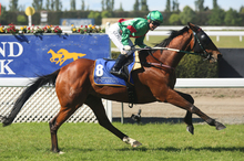 Blood Brotha scooted away from his rivals in the NZ Cup at Riccarton on Saturday.  Photo / Getty Images