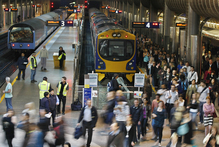 The survey found a majority of Aucklanders supported improved bus-rail transport. Photo / Steven McNicholl