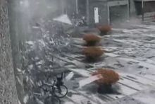 The video shows the damage caused by the bomb, which weighed nearly a tonne. Photo / Supplied