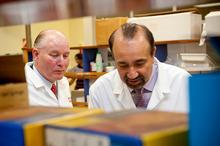 Distinguished Professor Paul Moughan and Professor Harjinder Singh, co-directors of the Massey University-based Riddet Institute. Photo / Supplied