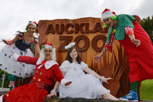 Christmas elves and fairies at the zoo. Photo / Jane Healy