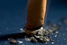 A stubbed out cigarette butt.  Photo / File