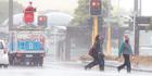 Wild weather in Wellington