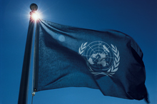 United Nations flag. Photo / Thinkstock