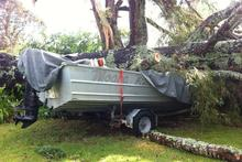 A tree which crushed a boat at a family home in Hobsonville. Photo / Paul Harper