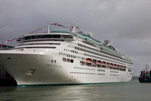 The cruise ship Dawn Princess. Photo / File / Neville Marrin