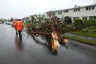 Destruction in Hobsonville, after Thursday's tornado. Photo / NZ Herald