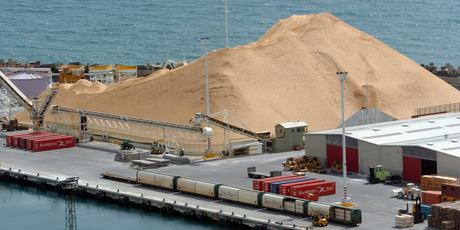 Wood pulp prices rose 3 per cent in November. Photo / Ross Setford