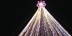 Watch: Telecom Xmas tree lights up