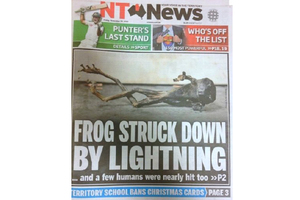 The front page of Darwin's NT News about a green tree frog, fried alive by a lightning strike. The unfortunate amphibian was hiding in a power box. Photo / Supplied