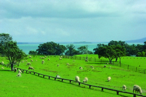 Omana Regional Park has plenty to offer for a pleasant day trip. Photo / Supplied