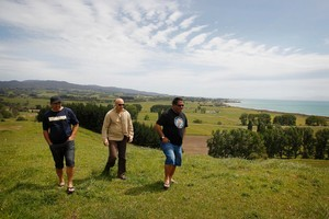From left, Tipa Compain, Morehu Wilson and Hauauru Rawiri, three of the 30 representatives from Hauraki iwi who are in settlement talks with the Crown, at the Rangipo pa site. Photo / Christine Cornege