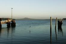 The Tamaki Estuary seen from the Half Moon Bay Marina. Photo / The Aucklander