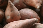 Uwhi (yams) have become one of the more nutritious, reliable and easy to store food sources brought over to Aotearoa by Maori. Photo / Thinkstock