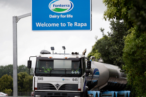 Fonterra Shareholders Fund units have surpassed the $7 mark. Photo / Sarah Ivey