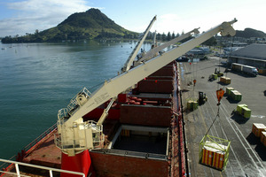 Port of Tauranga has a readily expandable infrastructure.  Photo / Alan Gibson