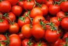 Tomatoes are packed with antioxidants that improve your health.Photo / File