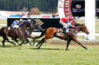Final Touch (right) wins the group one Captain Cook Stakes at Trentham. Photo / SNPA