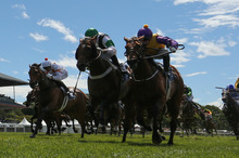 Only a miracle saved jockeys from being injured or killed when the first Riccarton race arrived at the 1000m to encounter marker cones across the width of the track. Photo / Getty Images